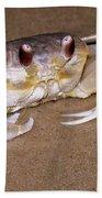 A Little Crabby Beach Towel