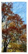 A Magnificent Fall Day Beach Towel