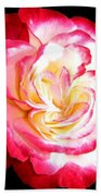 A Magnificent Rose Beach Towel