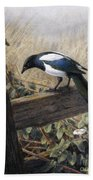 A Magpie Observing Field Mice Beach Towel