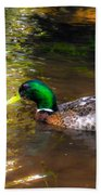 A Male Mallard Duck 3 Beach Towel