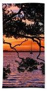 A Mangrove Morning Beach Towel
