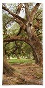 A Maze Of Oak Trees  Beach Towel
