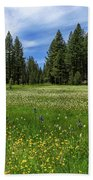 A Meadow In Lassen County Beach Towel