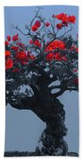 A Moments Serenity Beach Towel