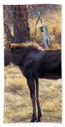 A Moose In Early Spring  Beach Towel