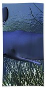 A Mother Sperm Whale Escorts Her Calf Beach Towel by Corey Ford