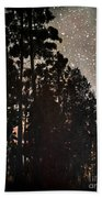 The Forest Night Beach Towel