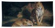 A Pair Of Leopards Beach Sheet