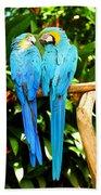 A Pair Of Parrots Beach Sheet