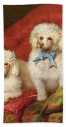 A Pair Of Poodles Beach Towel