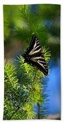 A Pale Swallowtail Vertical Beach Towel