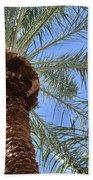 A Palm In The Sky Beach Towel