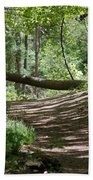 A Path In The Woods Beach Towel