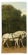 A Phaeton With A Pair Of Cream Ponies In The Charge Of A Stable-lad Beach Towel