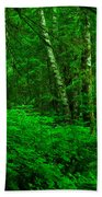 A Place In The Forest Beach Towel