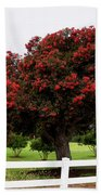 A Red Pin Under A Red Tree At Morro Bay Golf Course Beach Towel