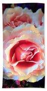 A Romantic Pink Rose Beach Towel