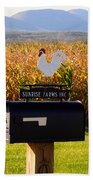 A Rooster Above A Mailbox 1 Beach Towel