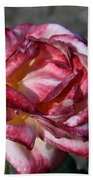 A Rose Of Different Shades Of Red Beach Towel