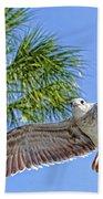 A Seagull Flyby Beach Towel