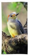 A Shady Woodland Bird Red-bellied Woodpecker Beach Towel