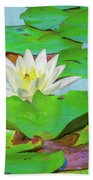 A Single Water Lily Blossom Beach Sheet
