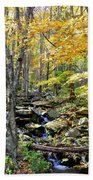 A Smokey Mountain Stream  Beach Towel