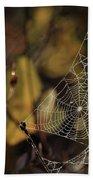 A Spiders Creation Beach Sheet