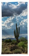 A Summer Day In The Sonoran  Beach Towel