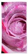A Sweet Sweet Rose Beach Towel