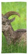 A Time To Rest Beach Towel