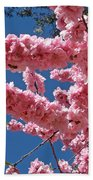 A Touch Of Spring Beach Towel