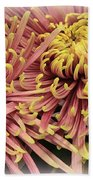 A Touch Of Yellow On Pink Mums Beach Towel
