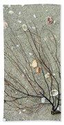 A Tree On The Beach - Sea Weed And Shells Beach Towel