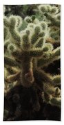 A Very Prickly Situation  Beach Towel