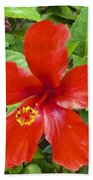 A Very Red Flower Beach Towel