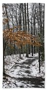 A Walk In The Snow Quantico National Cemetery Beach Towel
