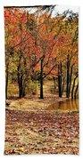 A Walk Through Autumn  Beach Towel