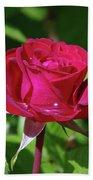 A Watered Rose  Beach Sheet