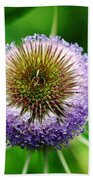A Wild And Prickly Teasel Beach Towel