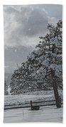 A Winter Storm In Pagosa Beach Towel by Jason Coward