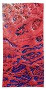 Abstract Artography 560007 Beach Towel