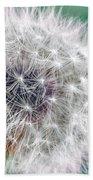 Abstract Dandy Lion - Teal Beach Towel