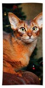 Abyssinian Cat In Christmas Tree Background Beach Towel