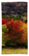 Acadia Colors Beach Towel