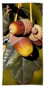 Acorn Cluster Beach Towel