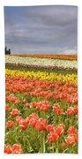 Across Colorful Fields Beach Towel by Mike  Dawson