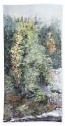 Across The Ravine Beach Towel