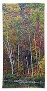 Adirondack Birch Foliage Beach Towel